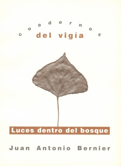 13 JUAN ANTONIO BERNIER Luces dentro del bosque (2000)