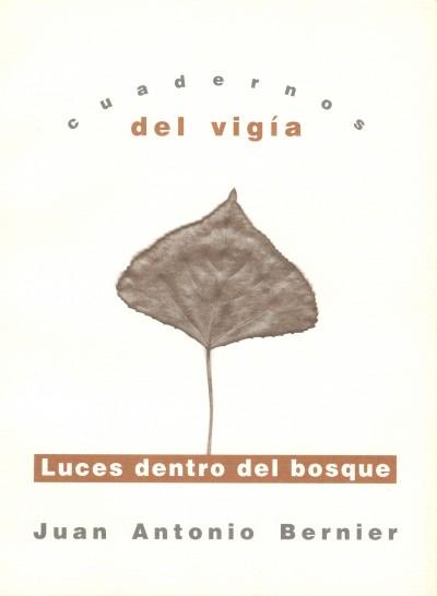 13 JUAN ANTONIO BERNIER Luces dentro del bosque (2000)